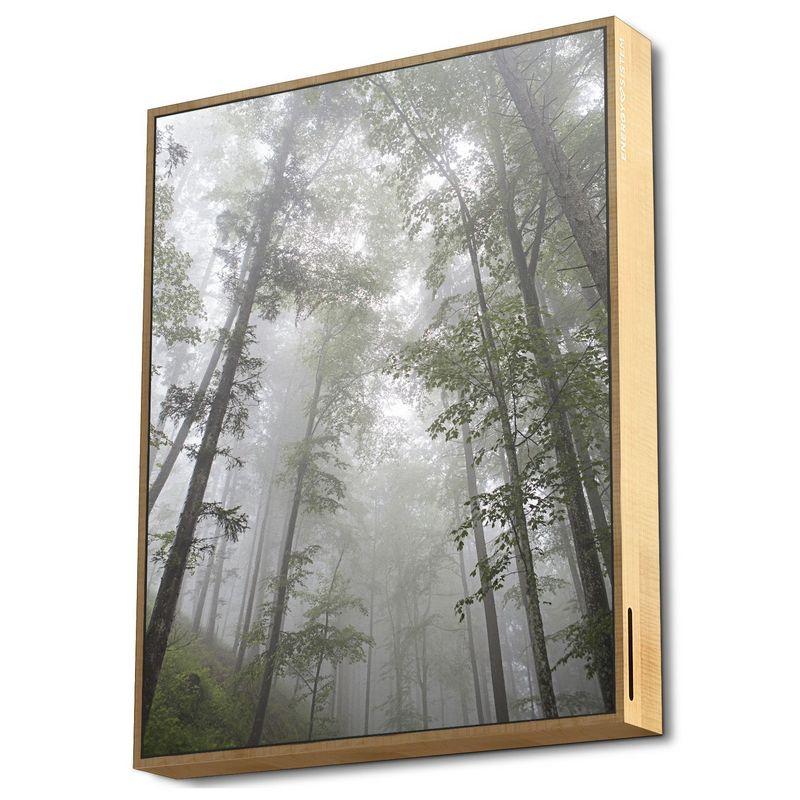 Energy Sistem Frame Speaker Altavoz Bluetooth Forest 50W