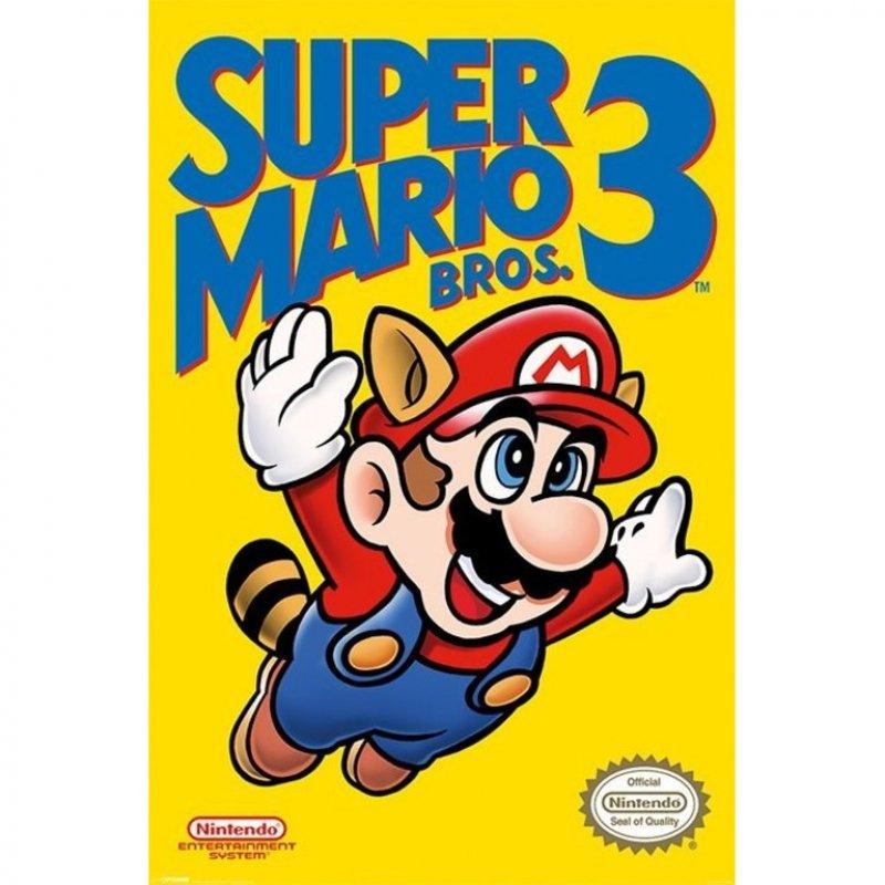 Pyramid Maxi Póster Super Mario Bros 3 91.5x61cm